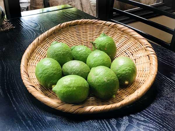 松崎町のもぎたてレモン