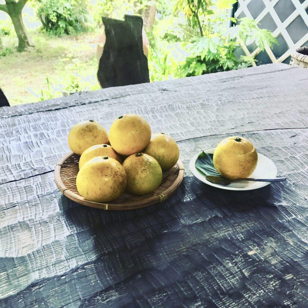 三余農園さんのニューサマーオレンジゼリー